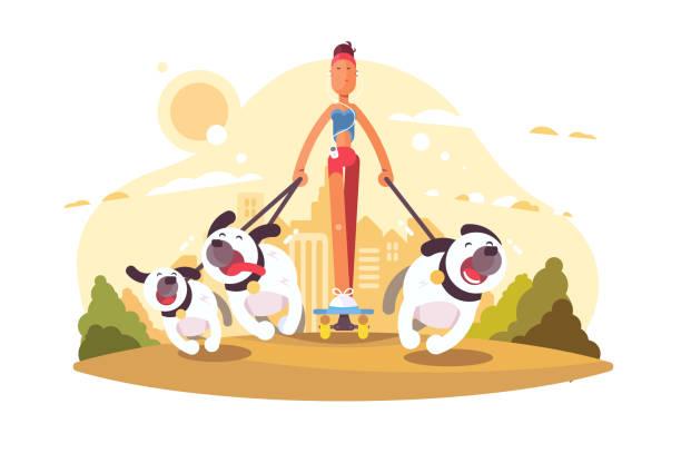 illustrazioni stock, clip art, cartoni animati e icone di tendenza di woman on skate walking with dogs - city walking background