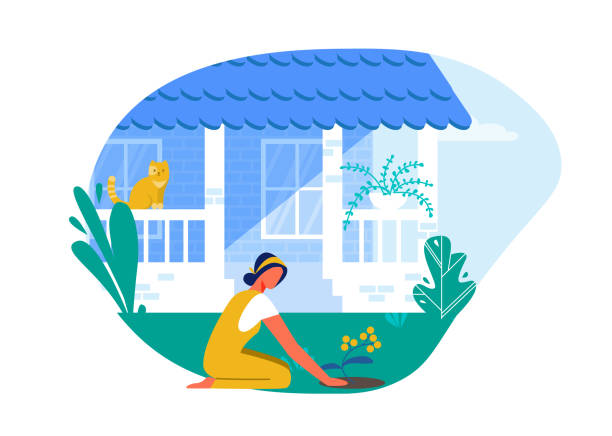 Woman Planting Flowers in Backyard near Home. Woman Planting Flowers in Backyard near Home Cartoon Flat Vector Illustration. Garden with Plants. Entrance to Private House. Cat Sitting on Fence and Looking at Girl who is on Grass. backyard stock illustrations