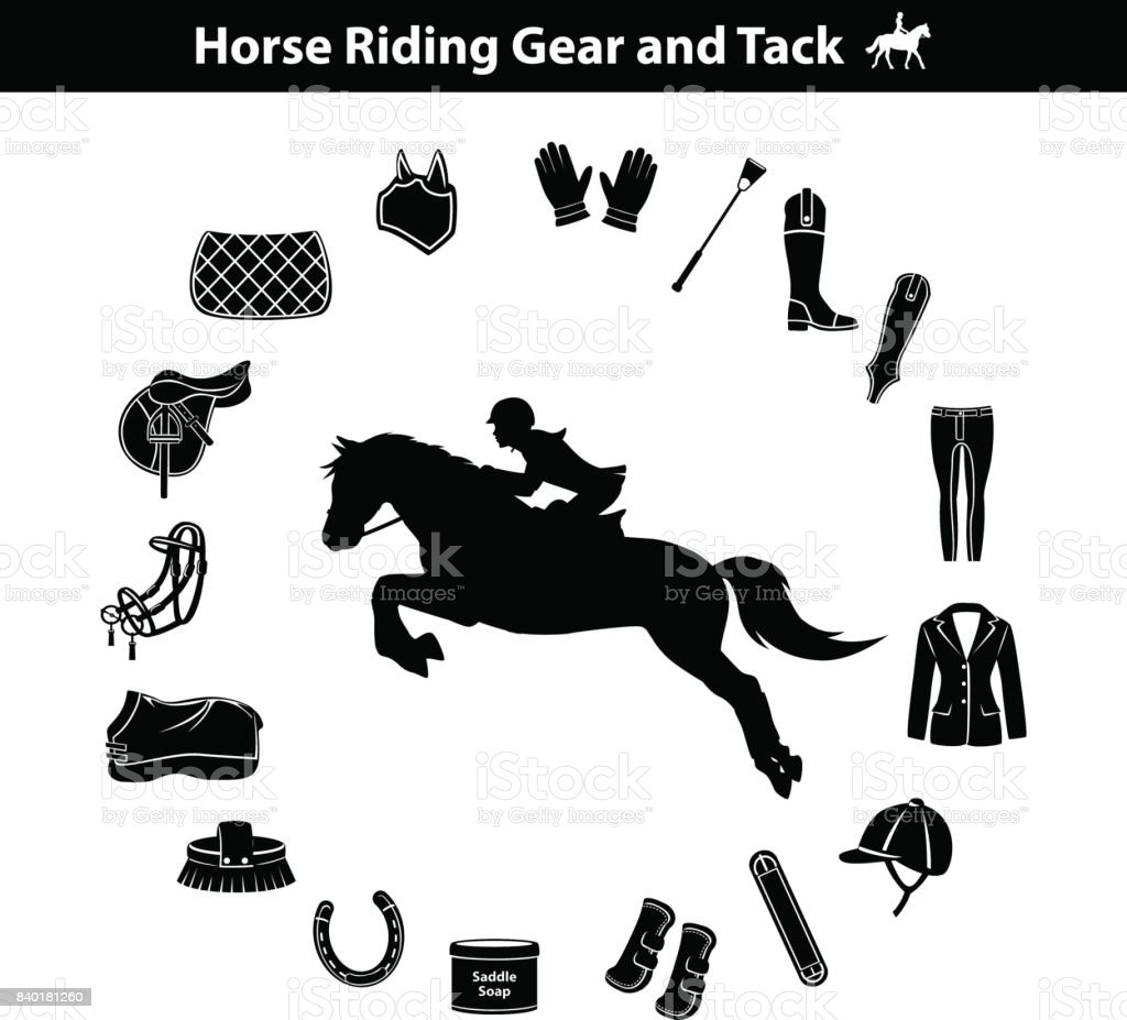 Woman Riding Horse Silhouette Equestrian Sport Equipment Icons Set Stock Illustration Download Image Now Istock