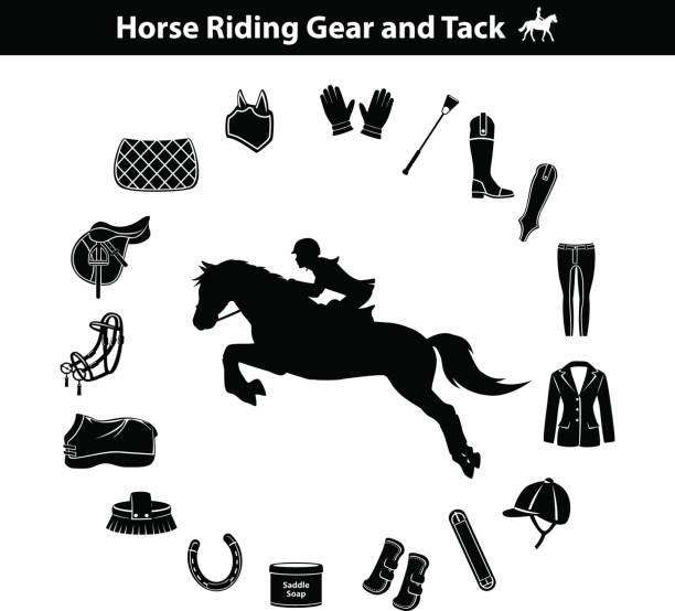 frau reiten pferd silhouette. reitsport equipment icons set - funktionsjacke stock-grafiken, -clipart, -cartoons und -symbole