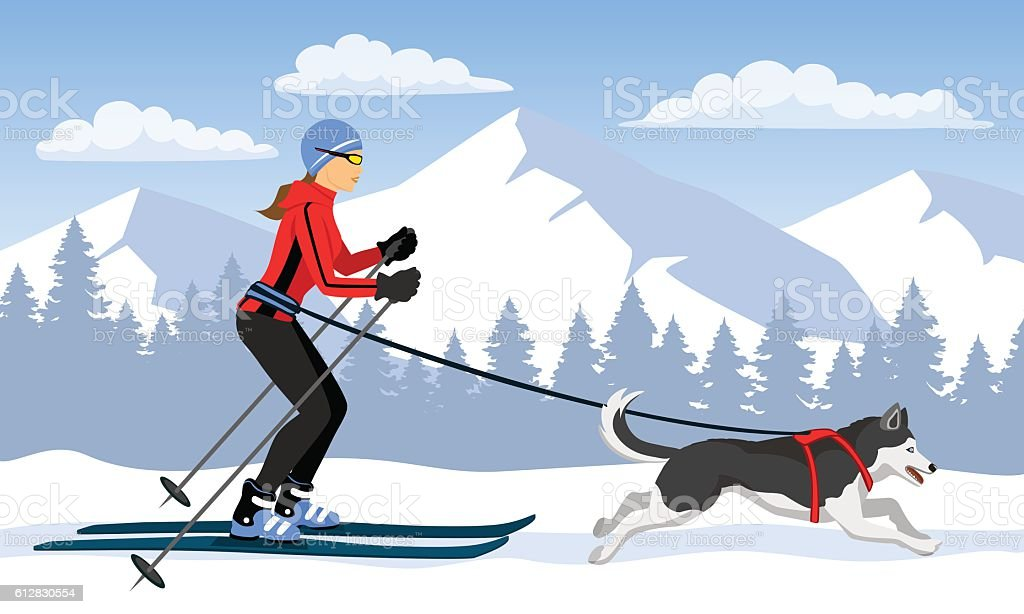 Woman skijoring with her dog vector art illustration