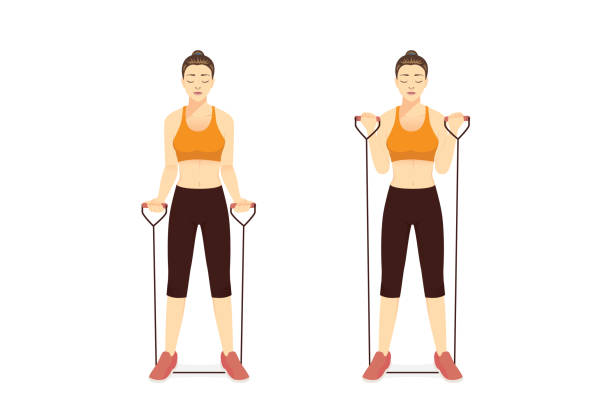 Woman using equipment for exercise with Resistance Band Bicep Curl in 2 step. Workout with lightweight equipment. vector art illustration
