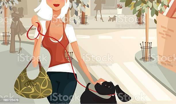 Woman walking a dog down the street vector id165725476?b=1&k=6&m=165725476&s=612x612&h=ladaldkzghamlnkbbxukpojtl1edj4wtbrfslwdymam=