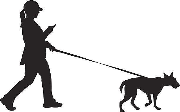 Best Woman Walking Dog Illustrations, Royalty-Free Vector ...