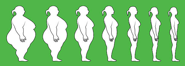 woman Weight Loss profile side view woman Weight Loss royalty free vector interface icon set. This editable vector file features black interface icons on white Background. The interface icons are organized in rows and can be used as app interface icons, online as internet web buttons, and in digital and print. biofeedback stock illustrations