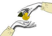 リンゴと女性の手