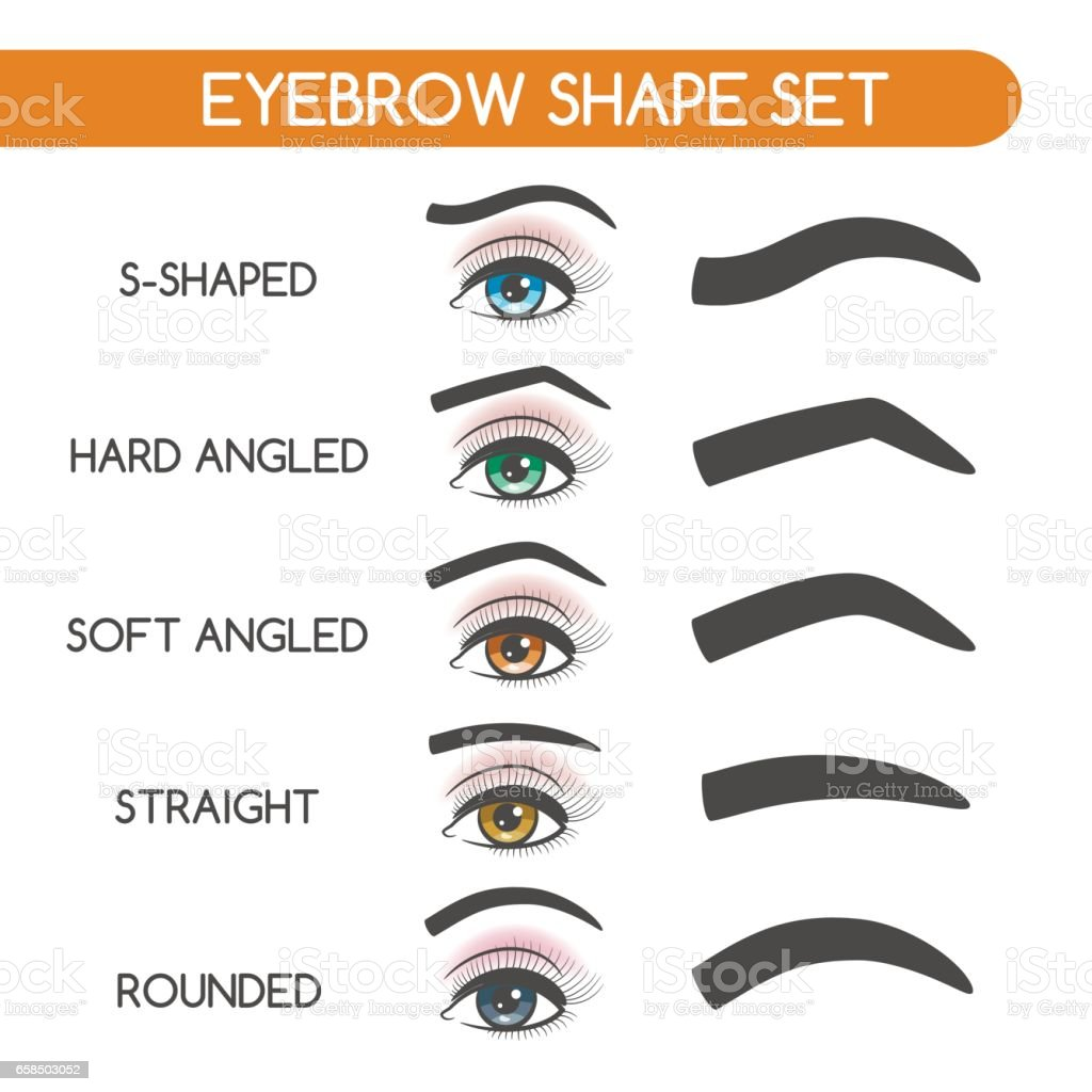 Frauen-Augenbrauen-Formen-set – Vektorgrafik