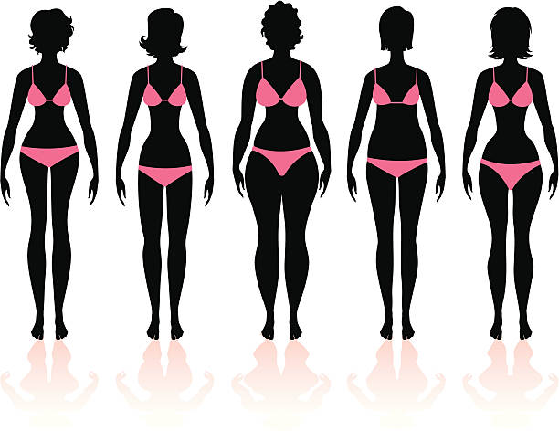 Women's Body Types Group 3 Five silhouettes of women with body shapes in pink bikinis/underwear. small torso with long legs, long torso with small legs, large thighs, apple shape, large hips.  heyheydesigns stock illustrations
