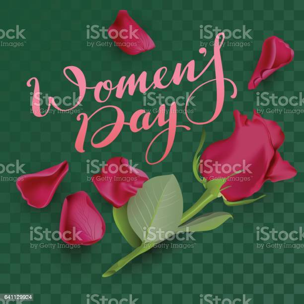 Womens day text lettering and red rose on transparent background vector id641129924?b=1&k=6&m=641129924&s=612x612&h=nqimcdl1cidthvvv3br5k n96hwwbaccou jdhdjywa=