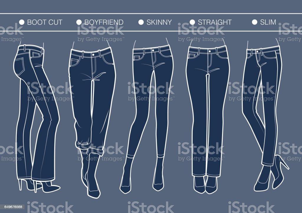 Women's denim fits vector art illustration