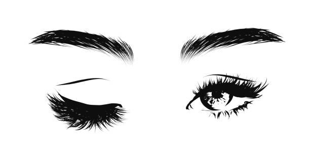 illustrazioni stock, clip art, cartoni animati e icone di tendenza di women's eyes with long eyelashes and eyebrows - fare l'occhiolino