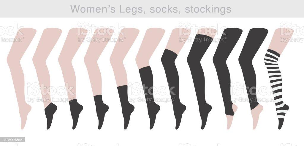 Women's Legs, socks, stockings, vector illustration vector art illustration