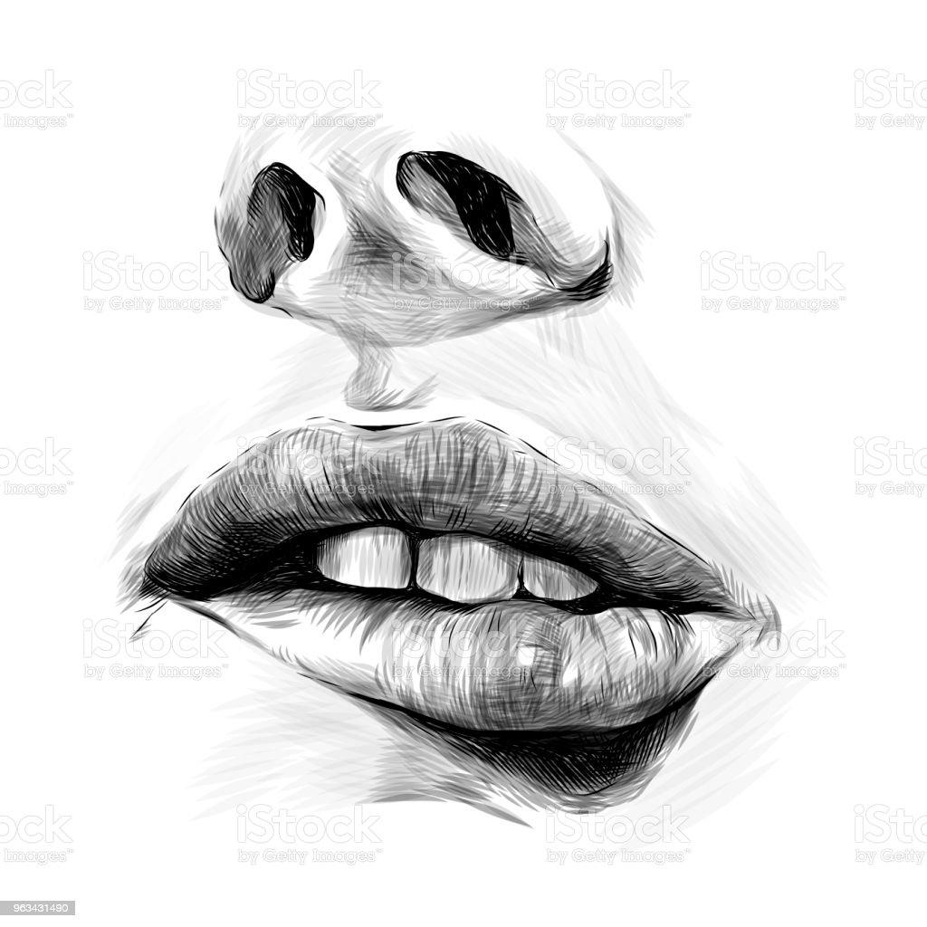 usta kobiet - Grafika wektorowa royalty-free (Jedna osoba)