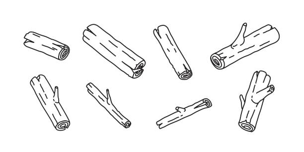 wood branch firewood doodle illustration vector cartoon - wood texture stock illustrations