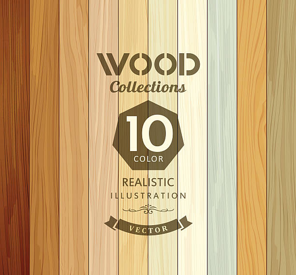 wood collections colored ten realistic texture - wood texture stock illustrations