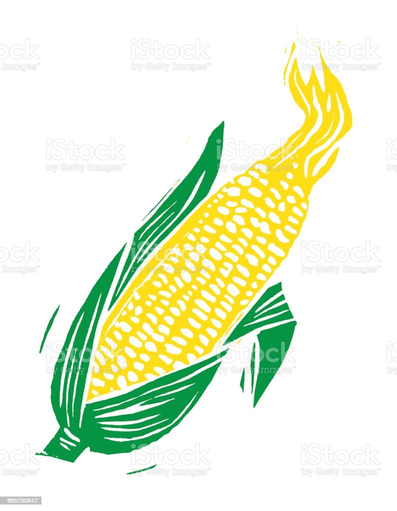Wood cut Ear of Corn vector art illustration
