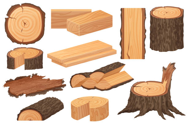 Wood industry raw materials. Realistic high detailed vector production samples. Tree trunk, logs, trunks, woodwork planks, stumps, lumber branch, twigs. vector art illustration