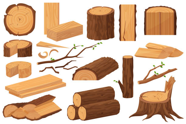Wood industry raw materials. Realistic production samples collection. Tree trunk, logs, trunks, woodwork planks, stumps, lumber branch, twigs cartoon vector illustration. vector art illustration