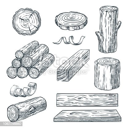 Wood logs, trunk and planks, vector sketch illustration. Hand drawn wooden materials. Firewood set.