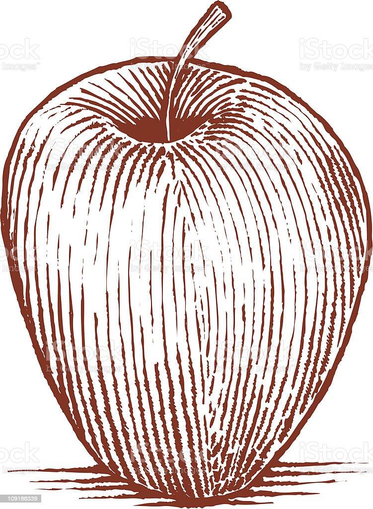 Woodcut Apple royalty-free stock vector art