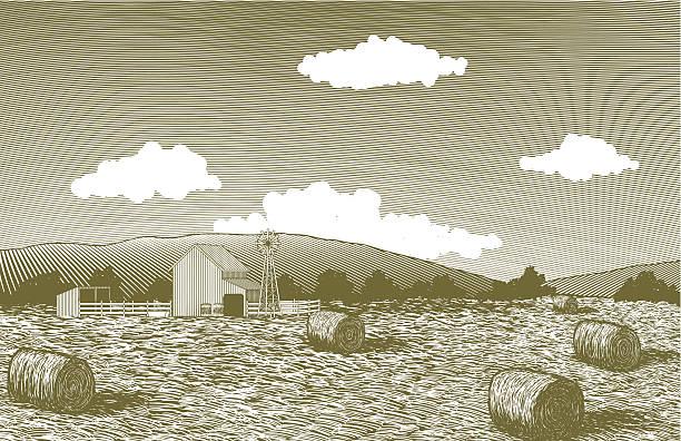 ilustraciones, imágenes clip art, dibujos animados e iconos de stock de escena grabado en madera barn jardín - straw field