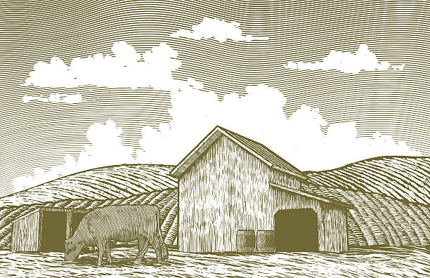 Engraved Cow Barn Clip Art Vector Images Illustrations