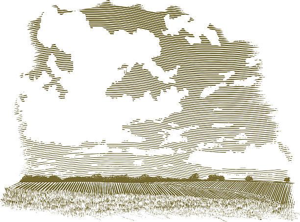 гравюра на дереве облако сцены - граттаж stock illustrations