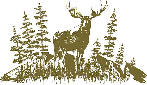 Woodcut Moose Design Woodcut-style illustration of a moose with trees and mountains in the background. moose stock illustrations