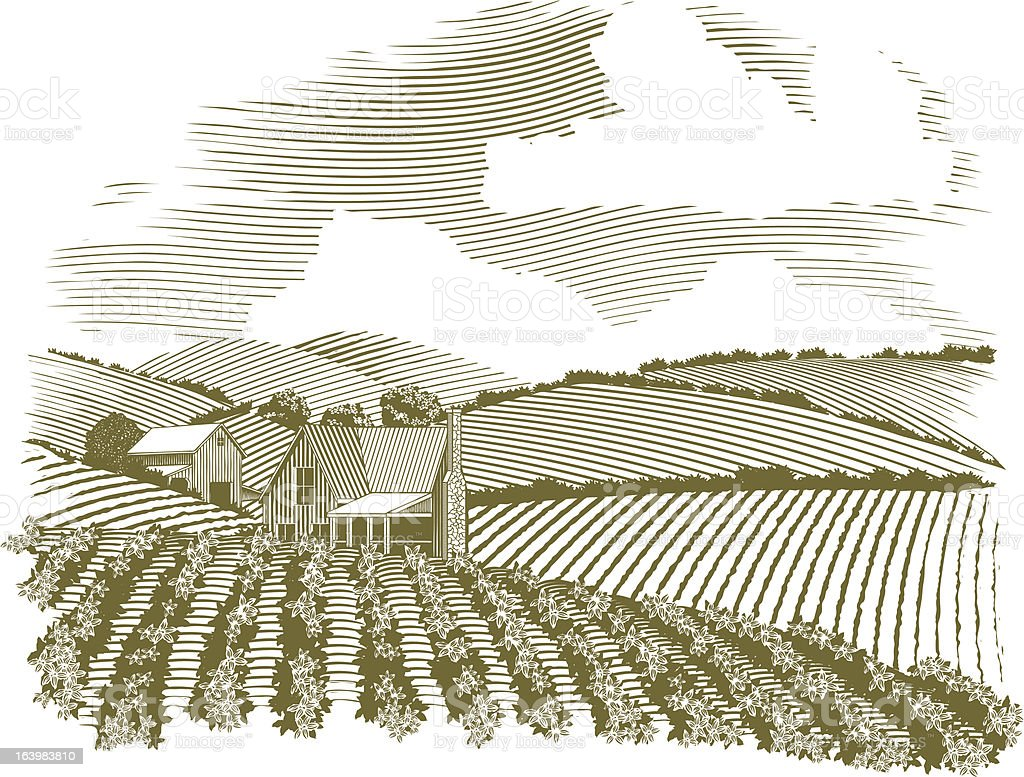 Woodcut Rural Farmhouse Vignette vector art illustration