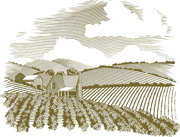 stockillustraties, clipart, cartoons en iconen met woodcut rural farmhouse vignette - houtgravure