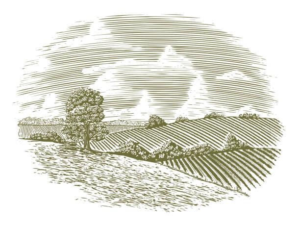stockillustraties, clipart, cartoons en iconen met houtsnede vintage platteland - houtgravure