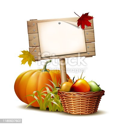 Wooden banner with Orange pumpkin, Autumnal leaves and basket full ripe apples. Vector illustration Autumn Harvest Festival or Thanksgiving Day. Environmentally friendly Vegetables.