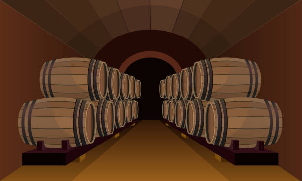 wooden barrels in the wine cellar - basement stock illustrations