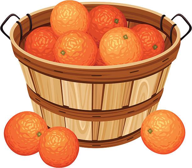 Wooden basket with oranges. Vector illustration. vector art illustration