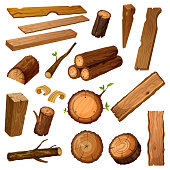 Wooden chips and bark, timber and stum. Wood