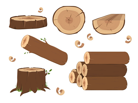 Wooden elements, lumber wood logs and tree trunks. Wood trunks. Stacked lumber material, trunk twig and firewood logging twigs. Tree stump
