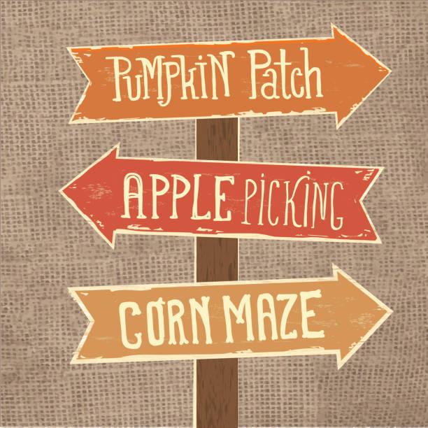 illustrazioni stock, clip art, cartoni animati e icone di tendenza di wooden sign post with arrows pointing to pumpkin patch, apple picking and corn maze - raccogliere frutta