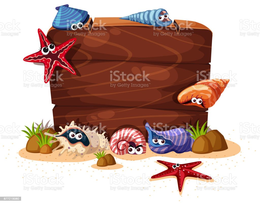 Wooden sign with seashells and starfish in background vector art illustration