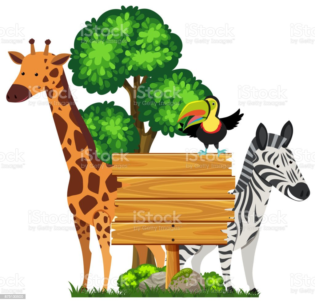 Wooden Sign With Wild Animals In Zoo Stock Illustration - Download Image  Now - iStock