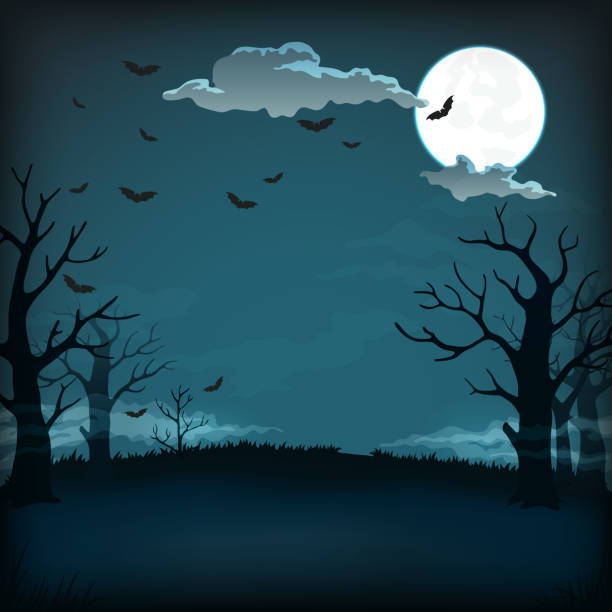 wooden signboard with full moon, clouds, bats, candles and illuminated pumpkins with witch hat copy Vector background, sign, poster design. Spooky night background with full moon, clouds, bats, bare trees silhouettes and dark blue sky scary halloween scene silhouettes stock illustrations