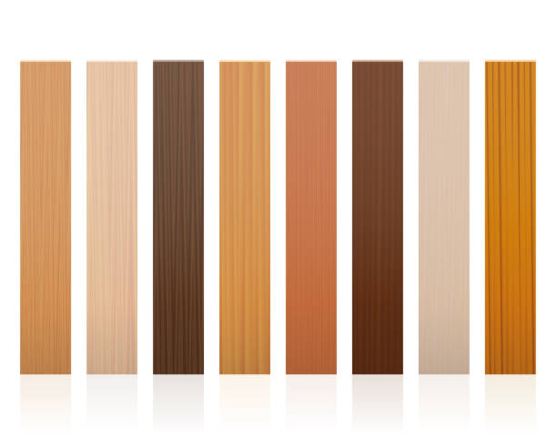 wooden slats. collection of wood boards, different colors, glazes, textures from various trees to choose - brown, dark, gray, light, red, yellow, orange decor models - vector on white background. - wood texture stock illustrations