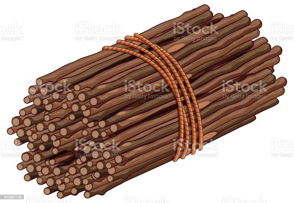Wooden stick in one bunch vector art illustration