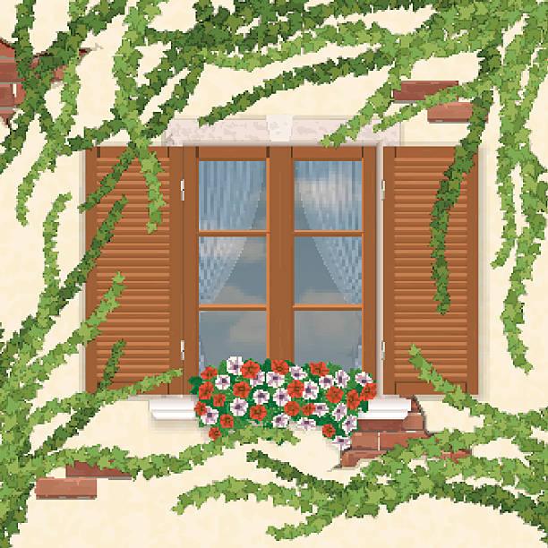 ilustrações de stock, clip art, desenhos animados e ícones de janela de madeira com hera postigos, repleto de vegetação. - ivy building