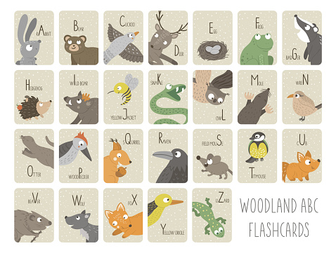 Woodland alphabet cards for children. Cute cartoon ABC set with forest animals. Funny flashcards for teaching reading or phonics for kids. English language letters pack
