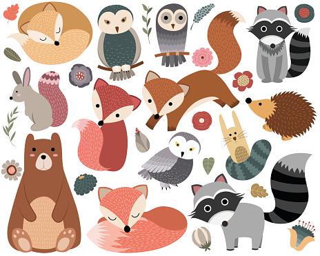 Cartoon animal stock illustrations