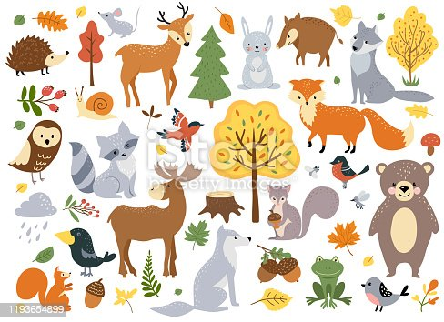 Woodland animals set, cute fox, bear, wolf, rabbit and birds. Perfect for scrapbooking, cards, poster, tag, sticker kit. Hand drawn vector illustration.
