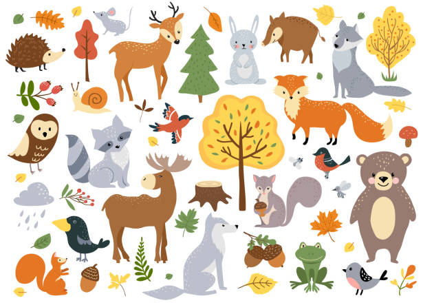 Woodland animals set Woodland animals set, cute fox, bear, wolf, rabbit and birds. Perfect for scrapbooking, cards, poster, tag, sticker kit. Hand drawn vector illustration. cute wolf stock illustrations