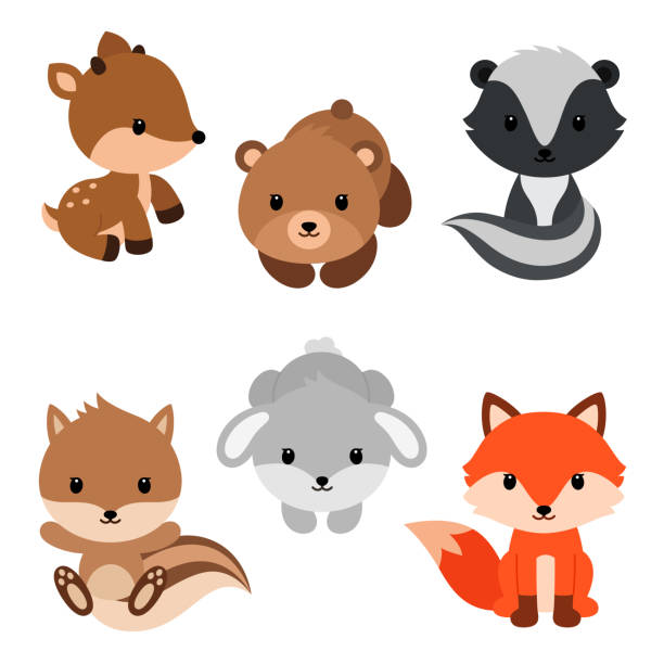 woodland animals set. - baby animals stock illustrations