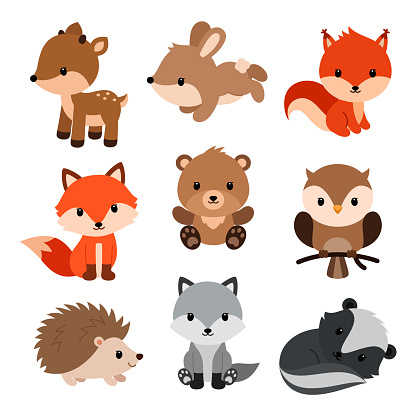 林地動物設置向量圖形及更多一組物體圖片