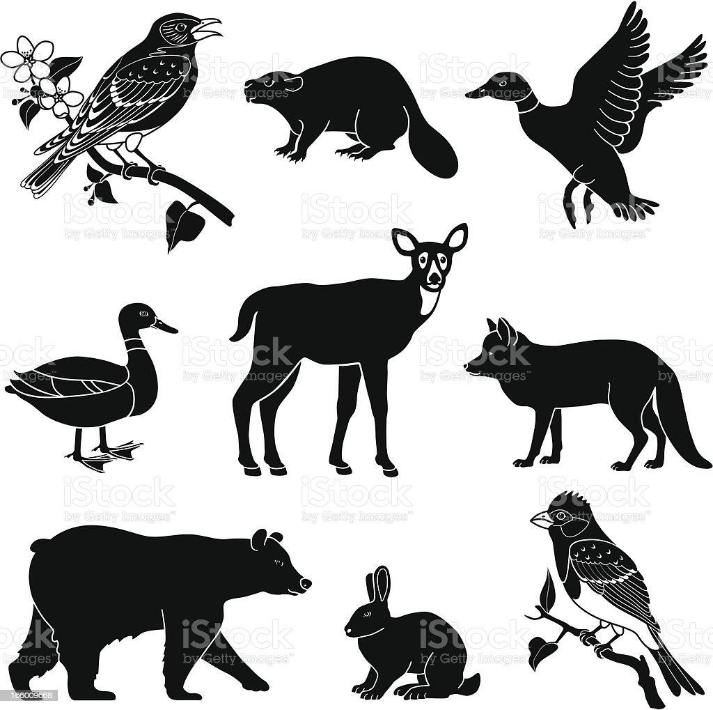 森の動物 のイラスト素材 166009668 | istock